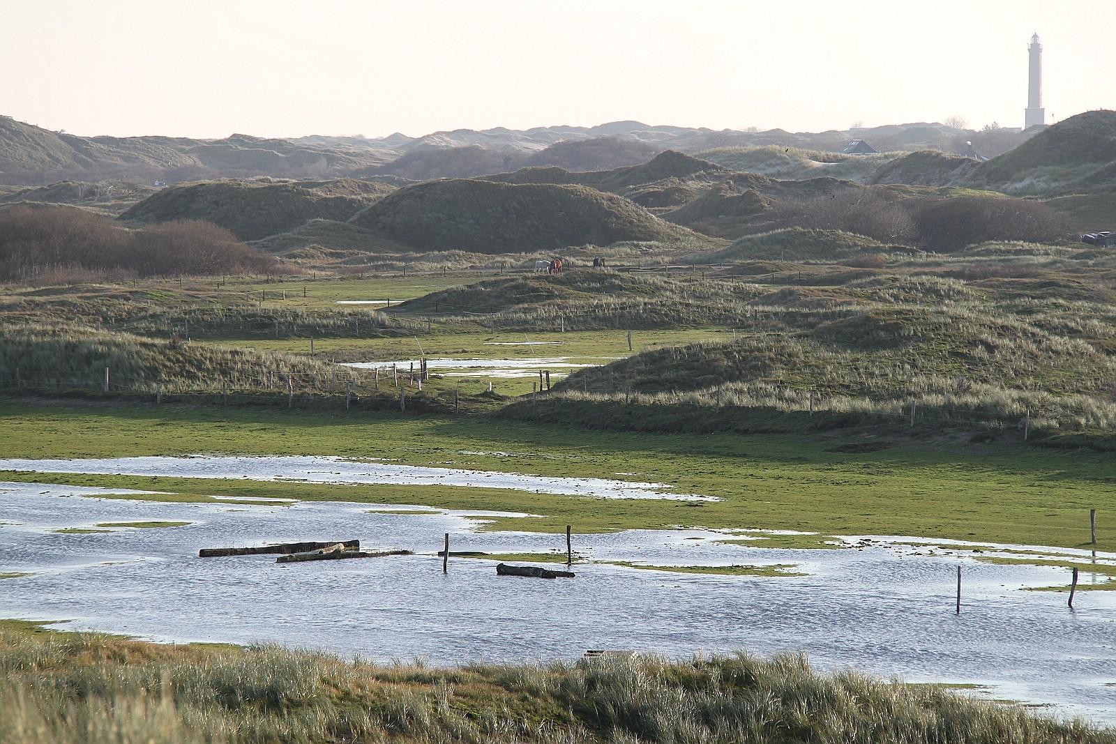 Ostland von Norderney