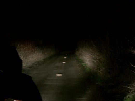 Nacht Fahrrad
