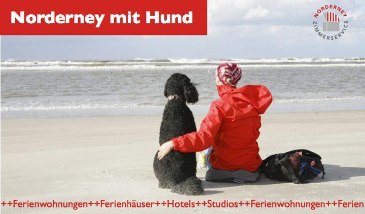 Norderney mit Hund