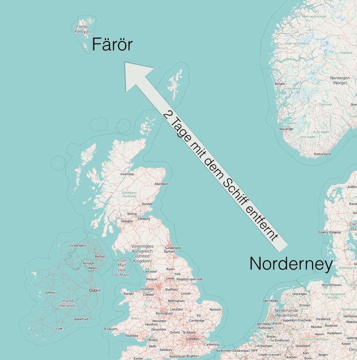 wale in der nordsee