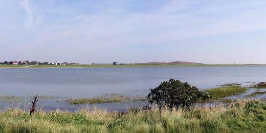 Südstrandpolder - Vogelschutzgebiet