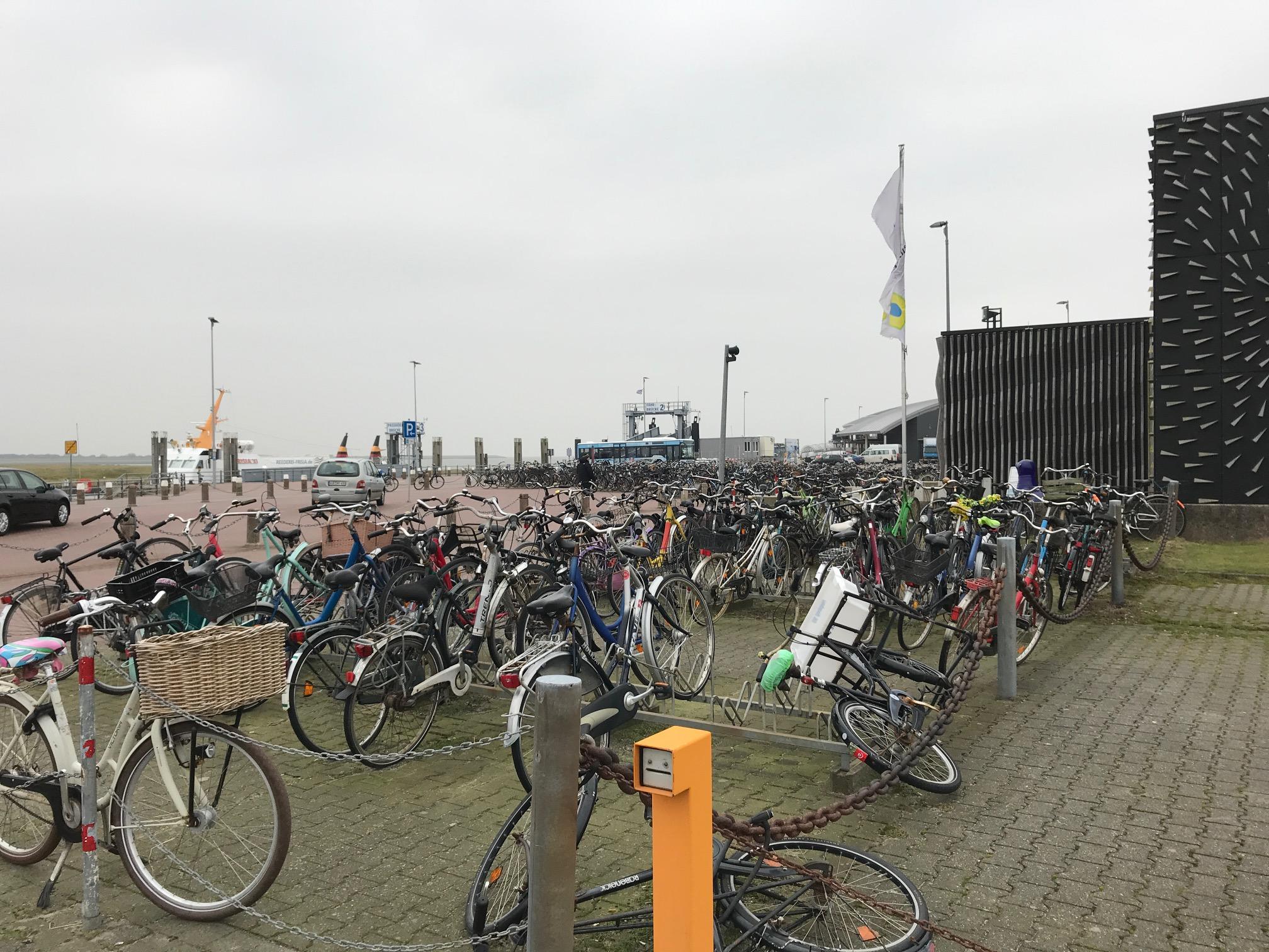 Hafen neue Planungen 3