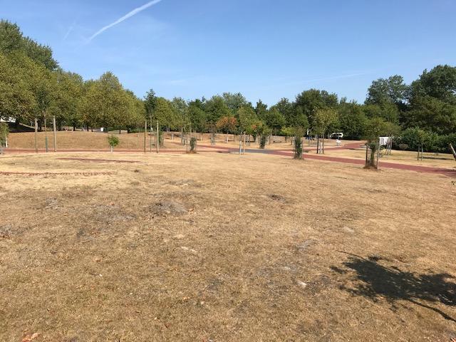 Norderney neuer Kurpark 1