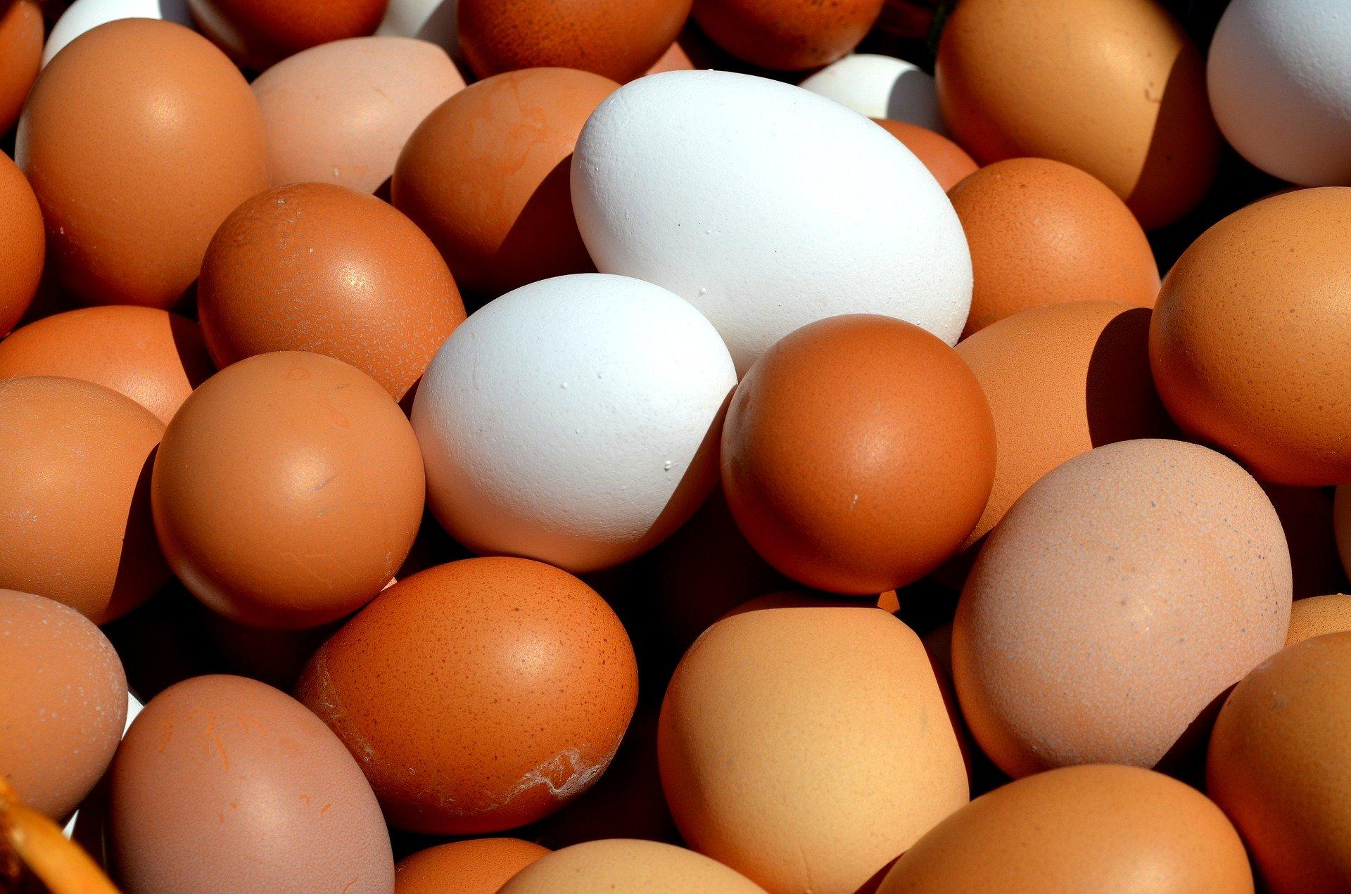 Wochenmarkt Norderney Eier