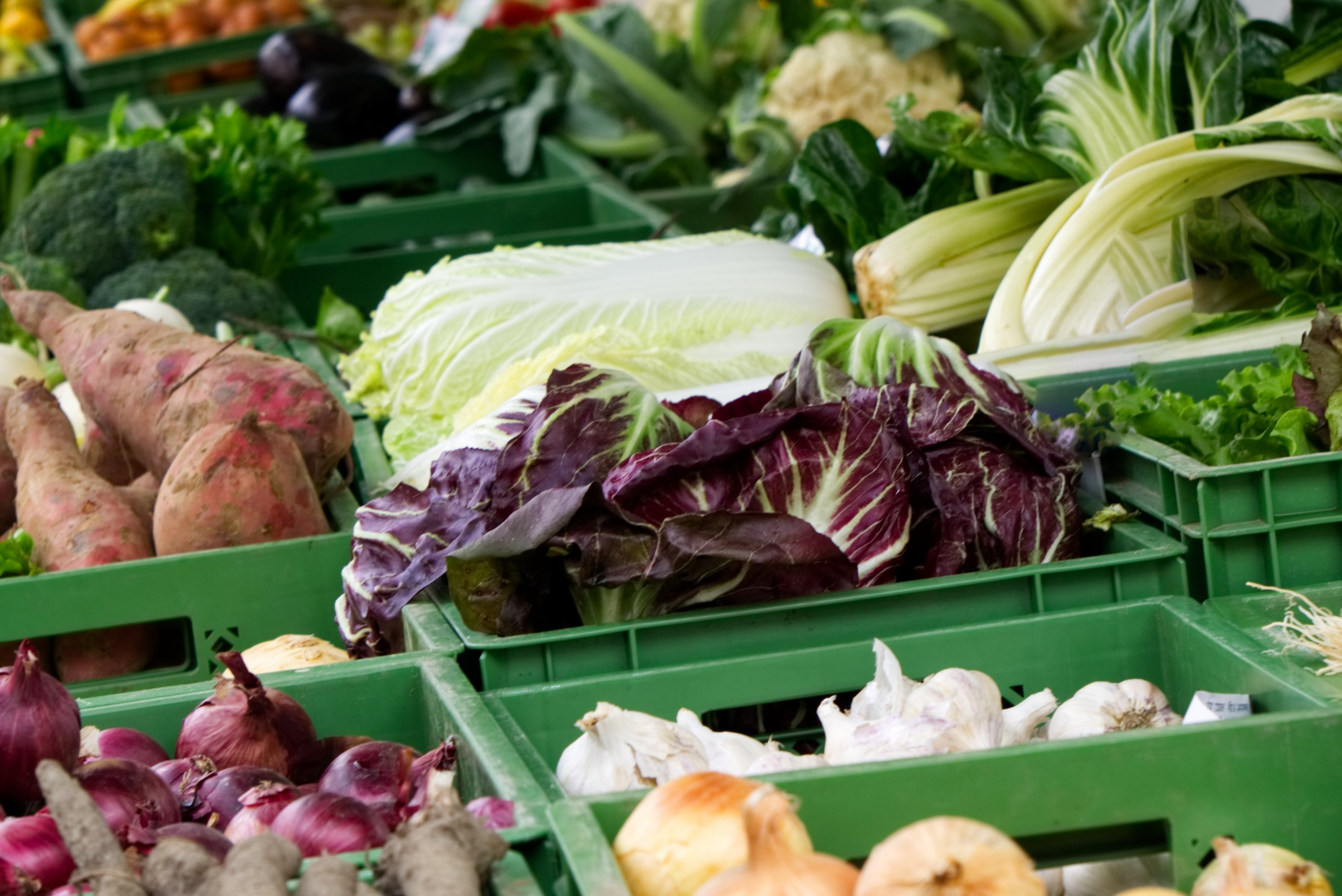 Wochenmarkt Norderney Gemüse