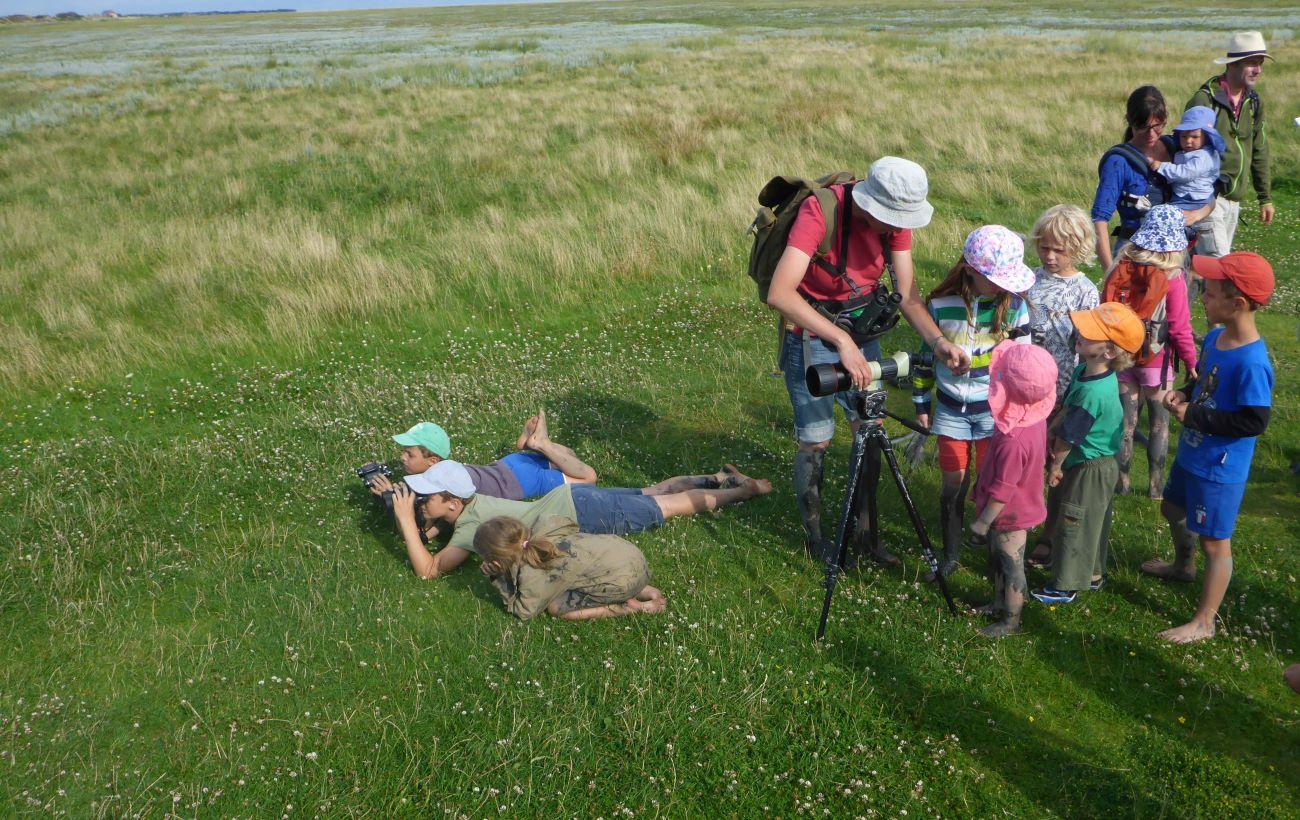 12. Zugvogeltage im Wattenmeer Vogelbeobachtung Foto_Jan Weinbecker
